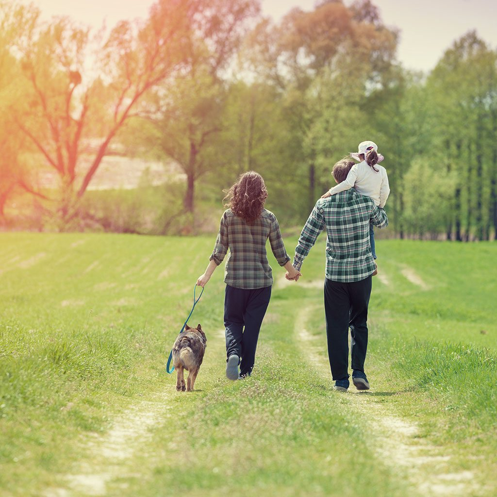 couple walking with daughter and dog in open field - Finnigan's Run Farm